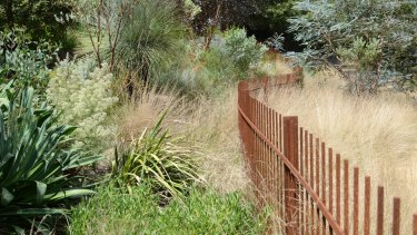 Kate Herd's Alphington garden is open March 17 and 18.