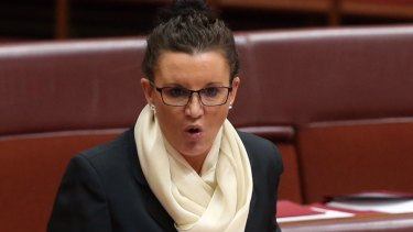 """Senator Jacqui Lambie's bill, which is being formally drafted, says """"a person must not, without reasonable excuse, wear a full face covering while in a public place""""."""