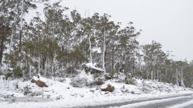 The snow fall comes after a record-breaking heatwave for the state in November.