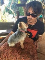 "Johnny Depp with one of his dogs, which Agriculture Minister Barnaby Joyce said had to ""bugger off"" or die."
