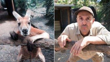 Peel Zoo's David as Jack the kangaroo.