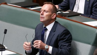 Former prime minister Tony Abbott denies being behind the leak.