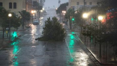 A tree blocks a street as Hurricane Harvey makes landfall in Corpus Christi, Texas, on Friday.