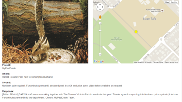 One of the reports on DAFWA's MyPest reporter app after a sighting near Swan Tafe in Kensington.
