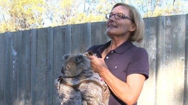 Alaine Anderson, a Croppa Creek farmer and koala supporter.