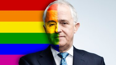 Same-sex marriage enjoys support in the community but the Coalition has struggled to deal with the issue internally.