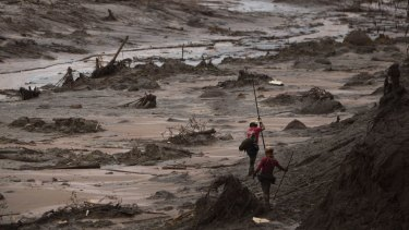 Rescue workers search for victims at the site where the town of Bento Rodrigues stood before the dams burst.