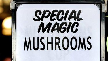 Could magic mushrooms help treat mental illness?