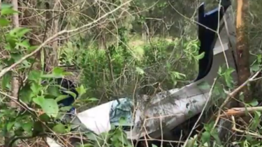 Two people were killed in a light plane crash near Taree on Saturday afternoon.