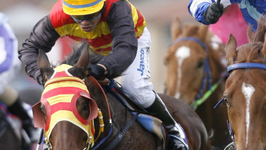 Eight-race card: Racing is back in Port Macquarie on Friday.