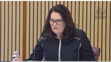 Labor's Deborah O'Neill has criticised ASIC's handling of the Nuix float.