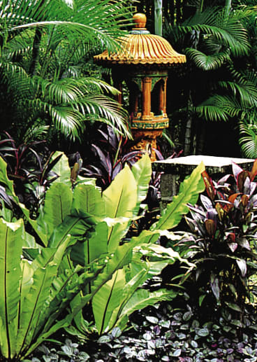 A Garden By Made Wijaya From The Book ITropical Design
