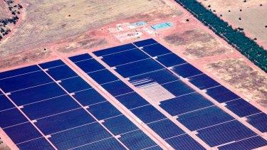 AGL's solar plant at Nyngan is Australia's largest at 102 megawatt-capacity.