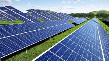 Redland City Council is considering entering the solar farming business.