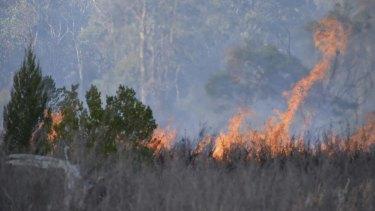 Flames surround the crash site.