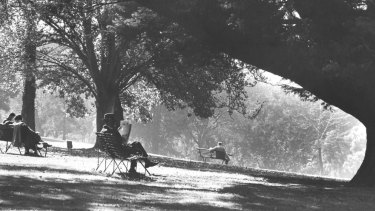 A man reading a newspaper in Alexandra Gardens in the 1930s.
