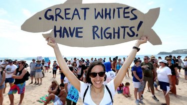 A shark protester at a recent rally in Perth.