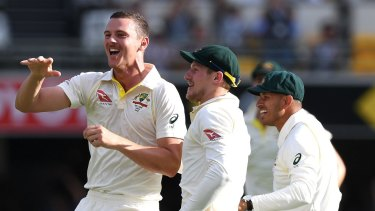 Finding his groove: Australia and Josh Hazlewood celebrate his dismissal of James Vince for two runs.