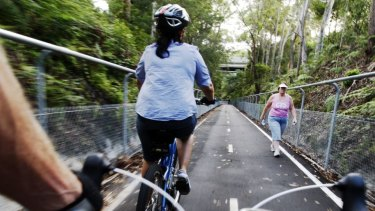 Heads up: cyclists and a pedestrian on a narrow walkway.