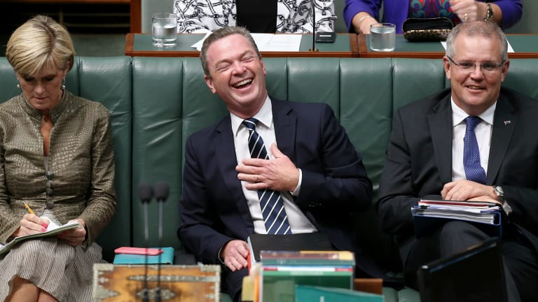 Christopher Pyne - you can't keep a keen man down