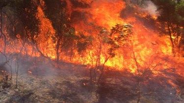 Flames were close to Sir Bertram Stevens Drive near Flat Rock around noon.