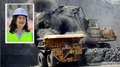 Qld approves mine that will create 1000 jobs but destroy koala habitat