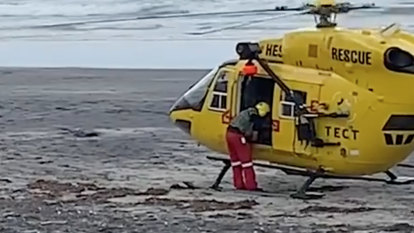 'No one saw her waving': Woman killed in first fatal shark attack in New Zealand in eight years