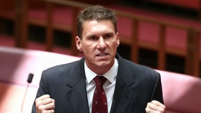 Conservative senator Cory Bernardi resigns from Parliament