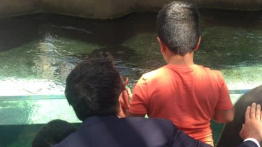 Premier Daniel Andrews takes asylum seekers to Melbourne Zoo, calls on Federal Government to let them stay in Australia.