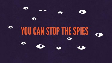 A screen grab from the Stop the Spies website.