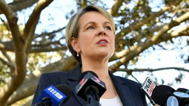 Deputy Opposition Leader Tanya Plibersek said the government was too focused on internal politics to make a decision.
