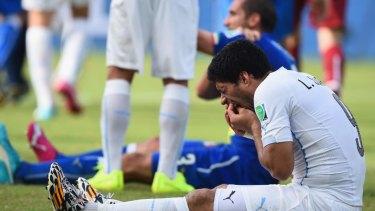 Repeat offender: Luis Suarez appeared to bite Italy's Giorgio Chiellini.