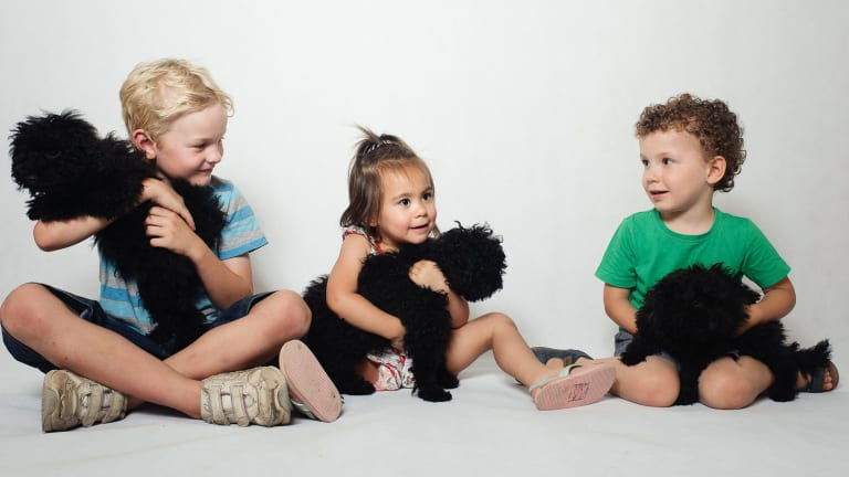 Riley, Marlee and Hugo with three puppies at RSPCA in Yagoona, Sydney.