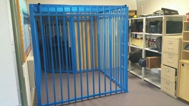 The principal of the Canberra school where a cage was erected for a 10-year-old autistic student has lost her job after an inquiry found she was the sole instigator of the decision.