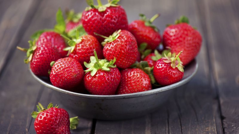 How to grow strawberries in Canberra