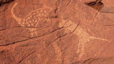 Petroglyphs of mammals on Burrup Peninsula rocks.