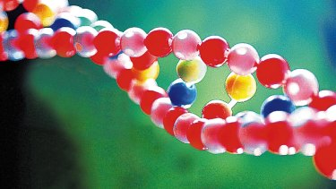 Life's building block: DNA.