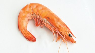Prawn fishers south of Brisbane are facing a 30 per cent revenue hit over Christmas.