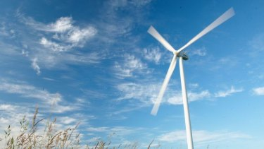 Wind farms supply more than 40 per cent of South Australia's electricity and have become a political hotspot.