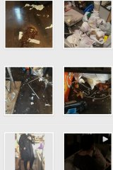 A screenshot of Star King's Instagram account showing pictures of the damage to her home.