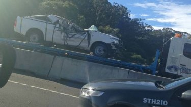 The large gum tree fell on the ute in high winds, witnesses said.