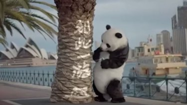 """A still from a China state TV film """"Bad Panda"""", which teaches Chinese tourists to behave well overseas. Here Bad Panda sprays """"I was here"""" near the Sydney Opera House."""
