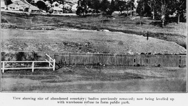 A photo of Paddington Cemetery in 1917, courtesy of the John Oxley Library.