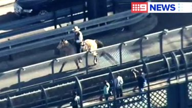 Inverell beef farmer Glenn Morris rides Hombre across lane eight of the Sydney Harbour Bridge sending a message to the city about protecting the land.