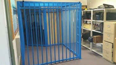 The review was sparked by national outrage after a Canberra school erected a cage for a 10-year-old boy with autism.