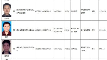 A partial list of those wanted in China's corruption crackdown.