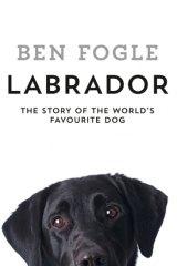 Labrador Ben Fogle