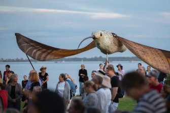 A giant shorebird puppet was the figurehead of a protest against 3600 units and a marina at Toondah Harbour in Cleveland on the weekend.