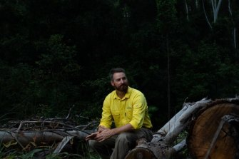 Dean Kearney, who is a senior manager for planning at Forestry Corporation, sits near an area where selective logging has recently taken place in the Lower Bucca State Forest near Coffs Harbour.