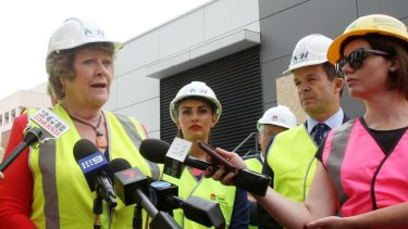 Health Minister Jillian Skinner said planning was already underway to determine the scope and size of the project at Nepean Hospital.